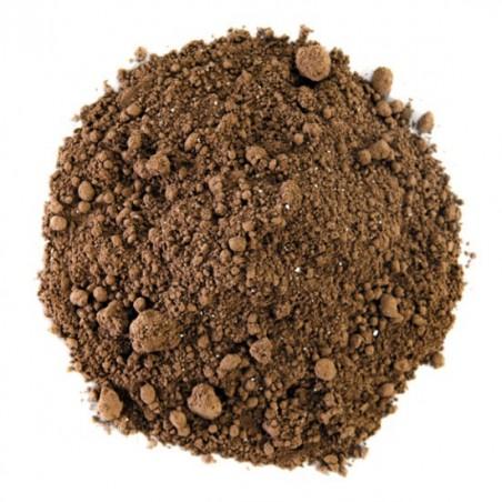 Cacao Choc Dog